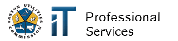 IT Professional Services Logo